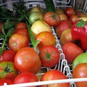چگونه میوه و سبزی جات را با ماشین ظرفشویی بشوریم . شستشو میوه ها